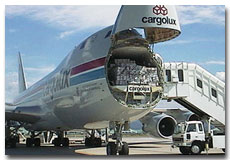 Northwest Airlines Cargo